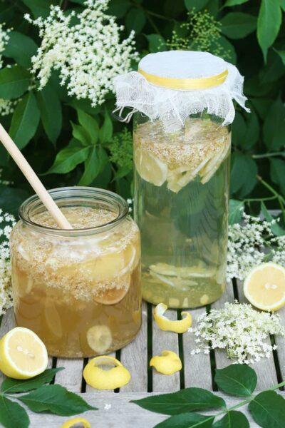 Limonade maison au sureau